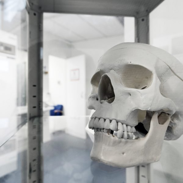 crazy doctor skull product image